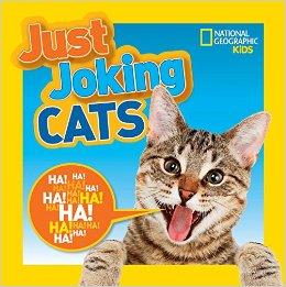 JustJokingCats